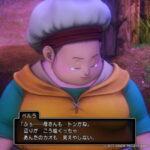 【PS4版・ドラクエ11冒険記⑬:最後の砦へと向かう勇者】母と幼馴染との再会(ネタバレ注意)