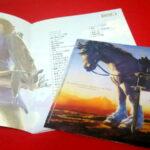 【ゼルダの伝説BOWサントラ初回限定盤詳細】収録曲リスト(ブックレット)も読み応え満点!プレイボタンもクオリティ高いぞ!
